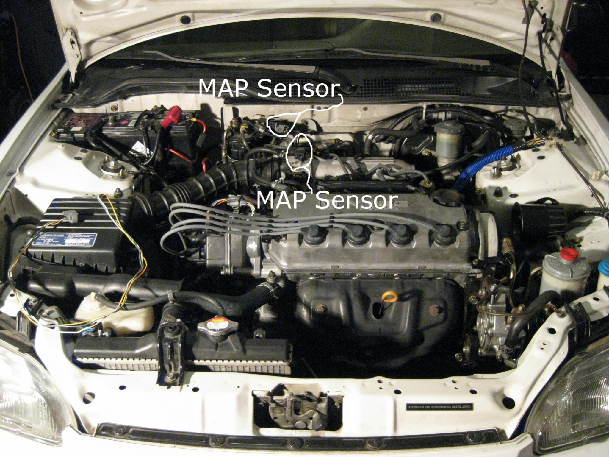 Diagram Shift Solenoid Location Honda Elementon Honda Accord Fuel Pump Location