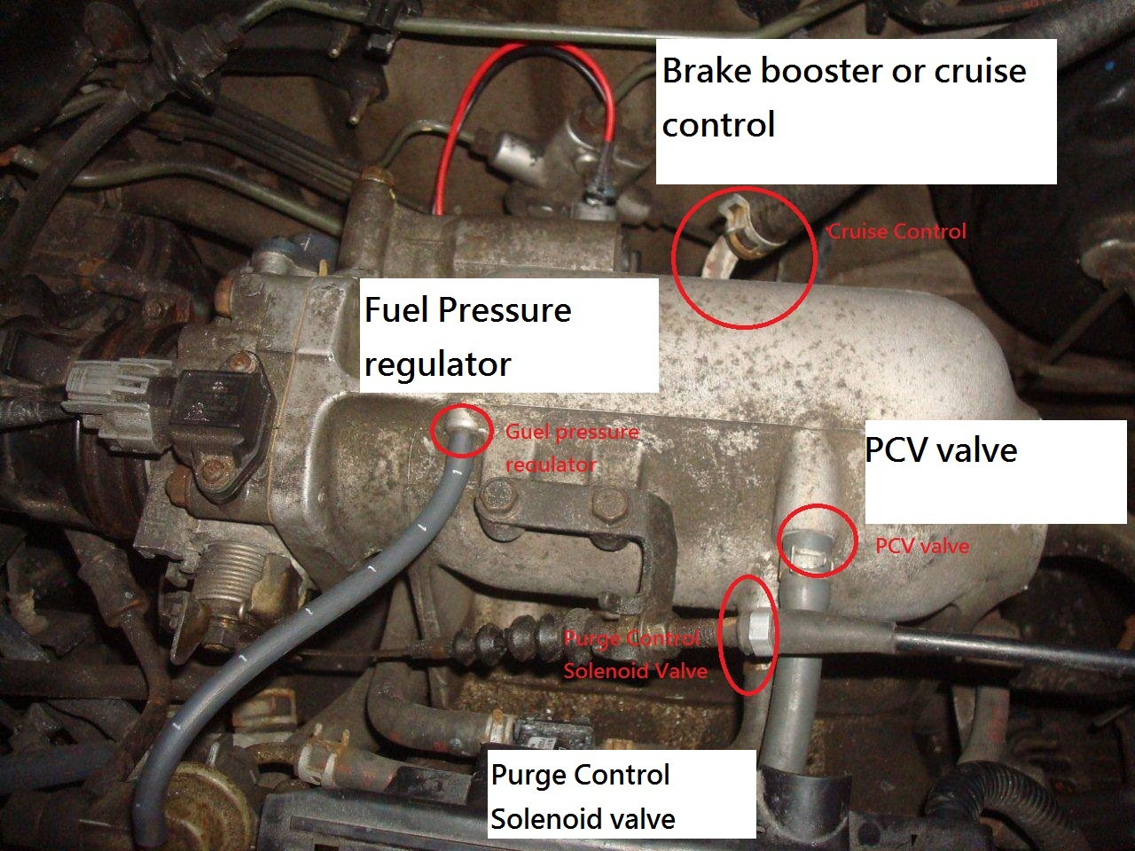 Honda Civic Vtec Solenoid additionally Washer Fluid Level Sensor besides Honda Civic Vtec Solenoid moreover 2002 Honda CR V Vtec Solenoid Location as well Honda Civic D16Y8 Engine. on d16y8 wiring diagram