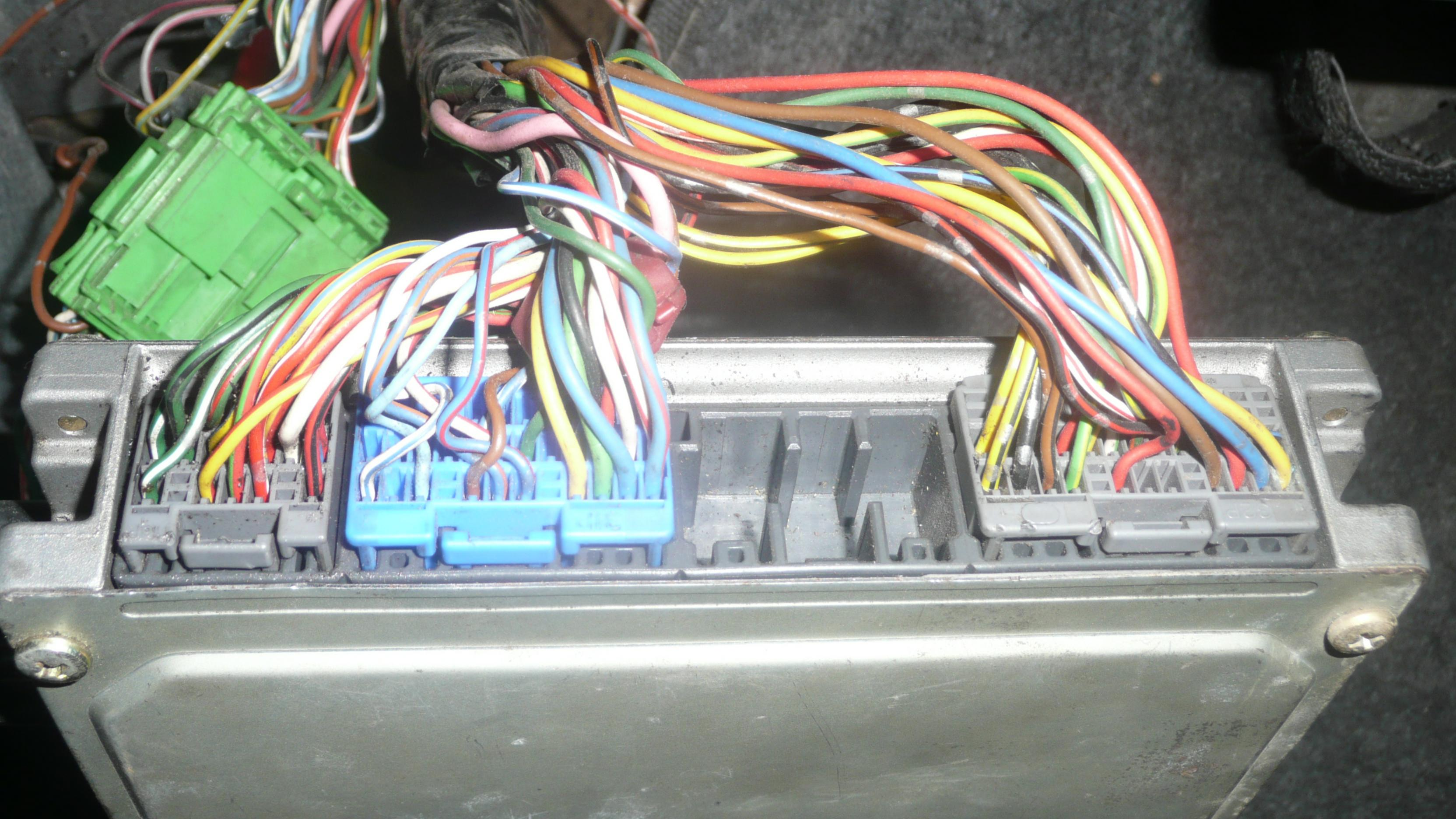 Db Dual Vtec Question Really Help Needed Dseriesorg - P2j ecu wiring diagram